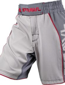 Sprawl Fusion 2 Fight Shorts - Grey/Charcoal